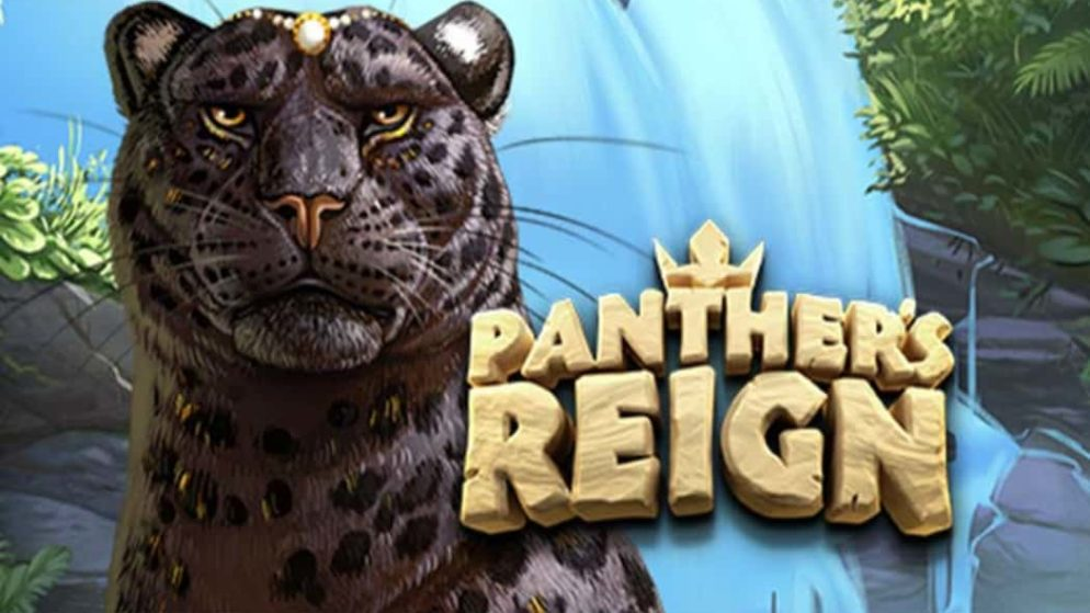 Panther's Reign
